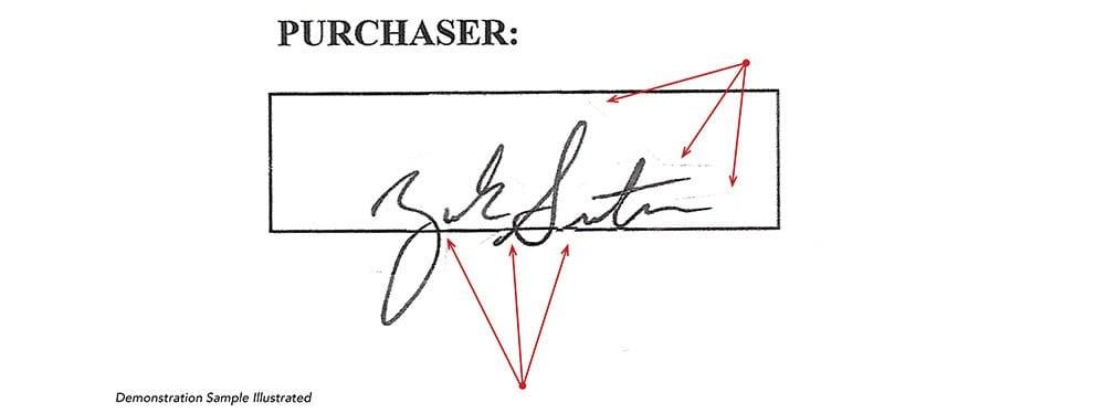 Demonstration Signature